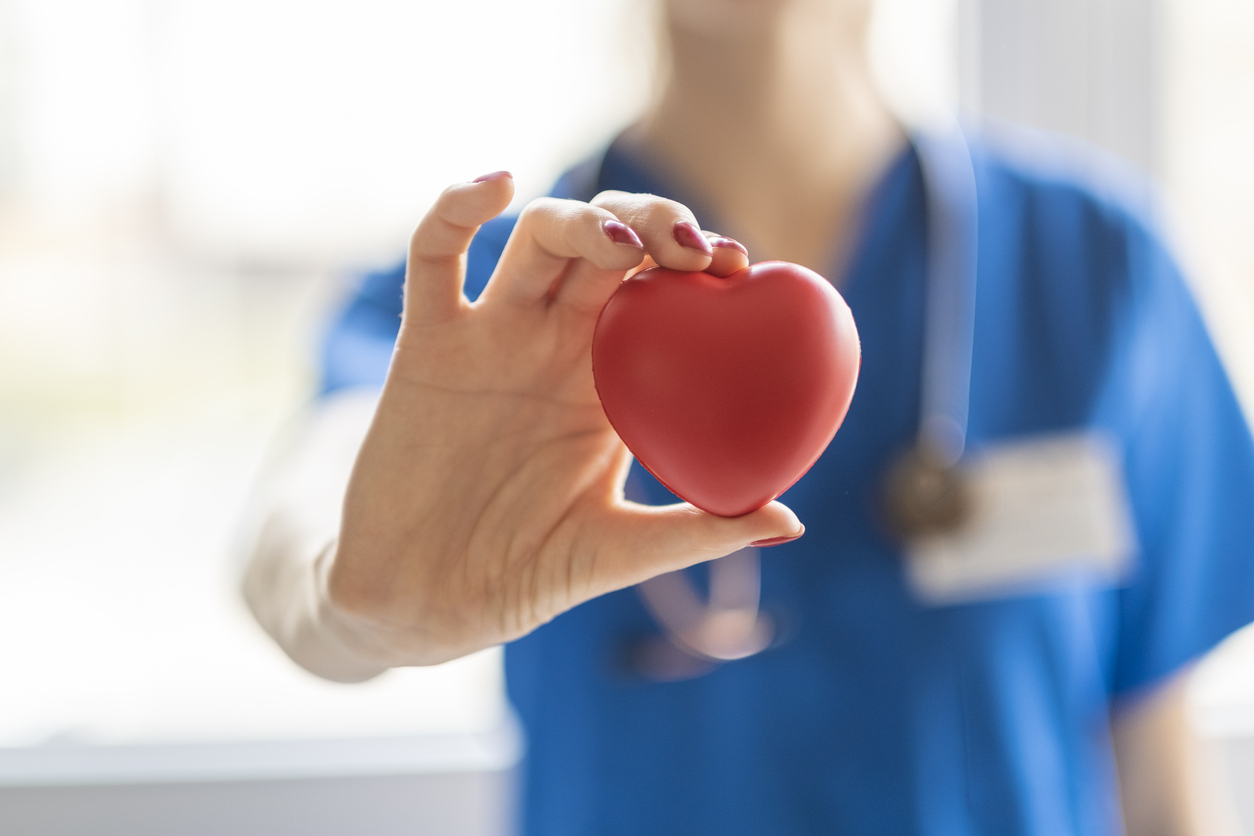 Female doctor is holding a heart in the hands, highlight the importance of learning about the major
